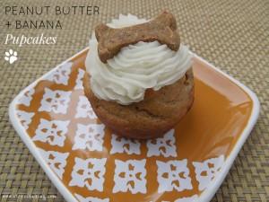 Peanut Butter + Banana Pupcakes
