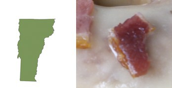 vt_bacon