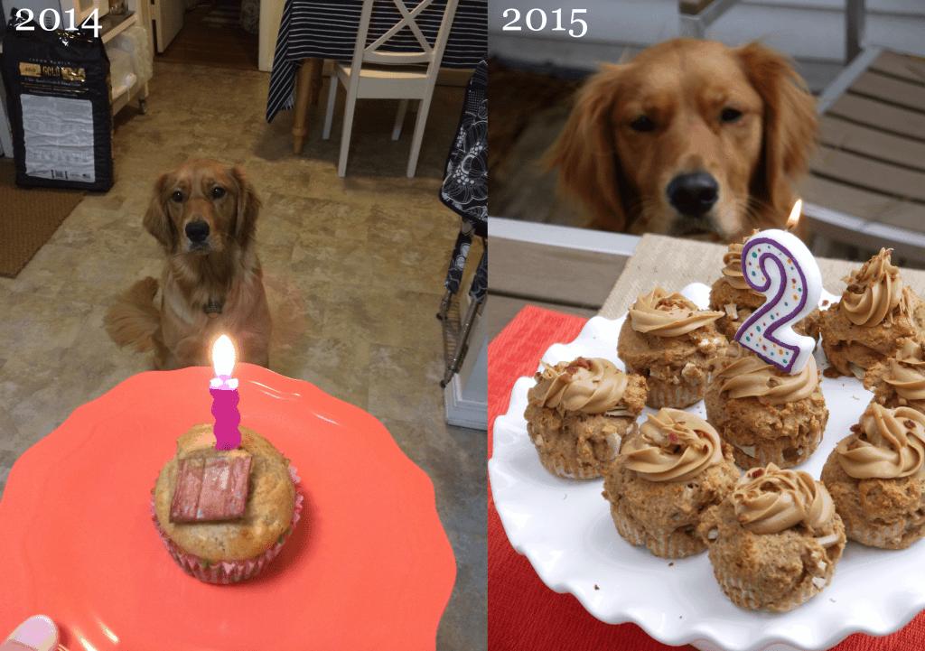 Penny's birthdays | stressbaking.com
