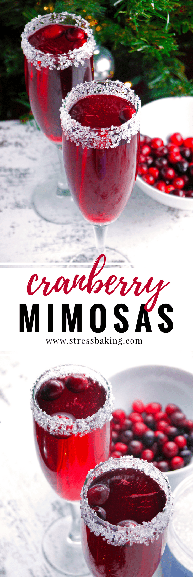 Cranberry Mimosas: A cranberry lover's version of the standard mimosa. Tart cranberries pair perfectly with a sugar-rimmed glass and sparkling champagne bubbles! The perfect holiday cocktail or Christmas cocktail. | stressbaking.com #stressbaking #holidays #christmas #thanksgiving #newyears #cranberries #drinks #cocktail