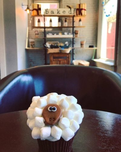 Sheep cupcake at Baked