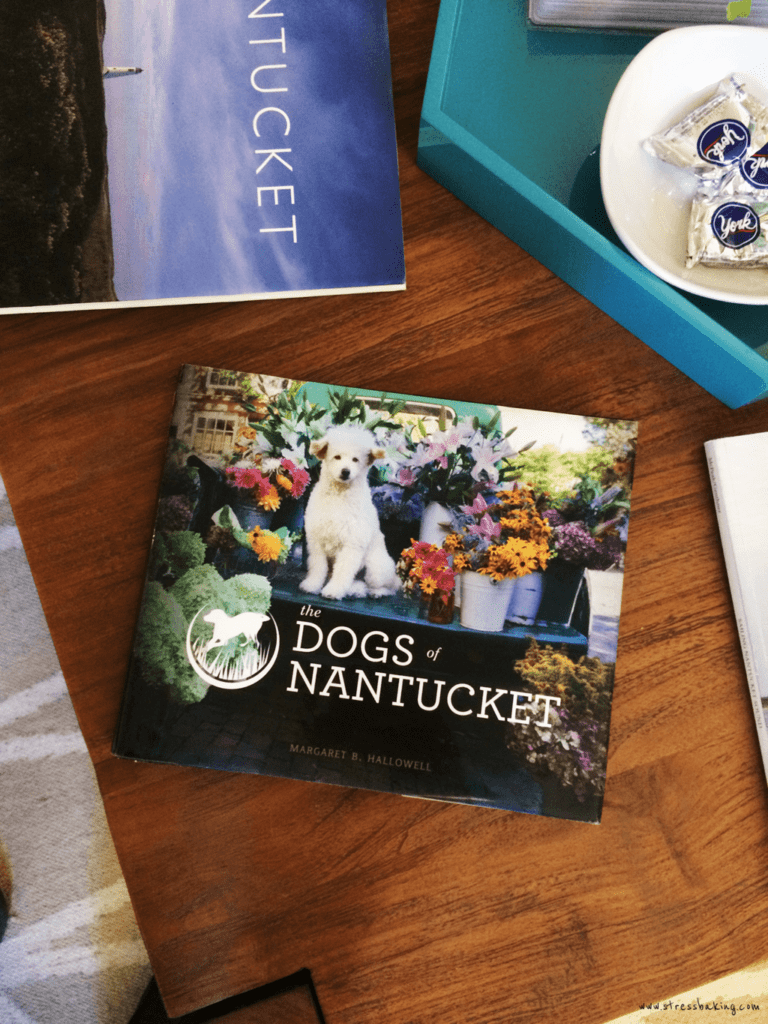 Dogs of Nantucket book