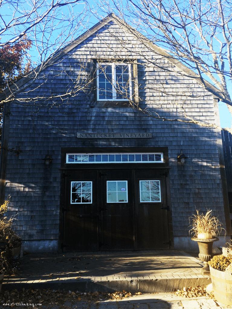 Nantucket Vineyard